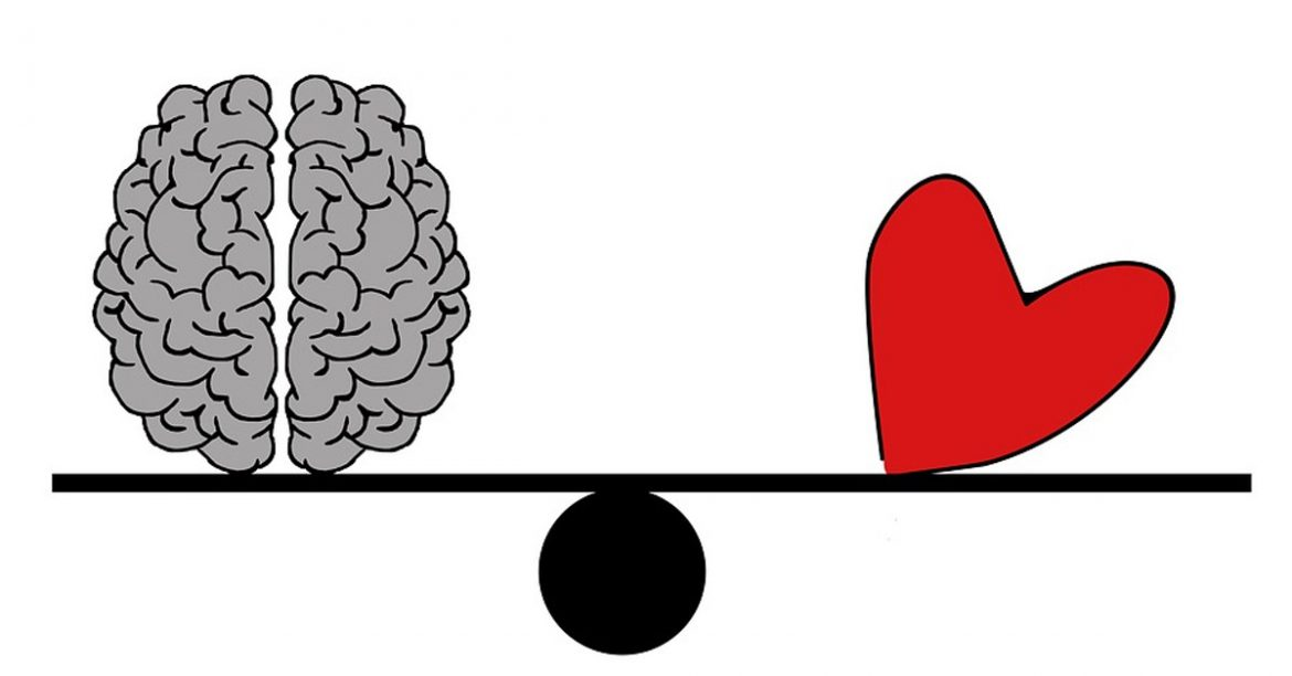 Think with Heart or Mind in routing life – Mind Or Heart, Whom Should You Follow?